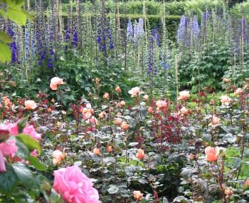 Among Women 190: Cultivate Your Faith in a Garden